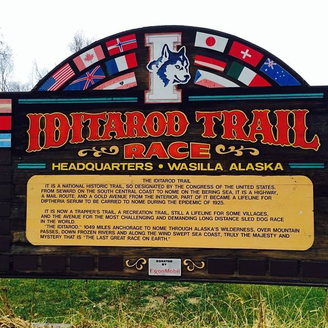 Nicole Forto Junior Iditarod sign up